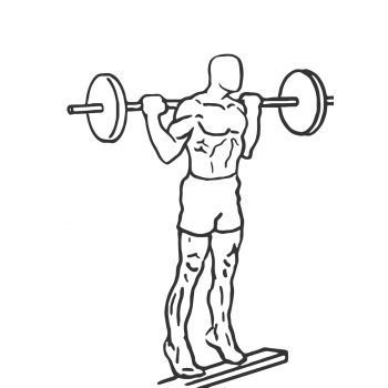 Standing Barbell Calf Raise - Step 2