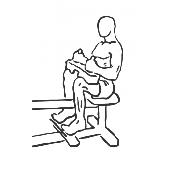 Seated Calf Raise - Step 2