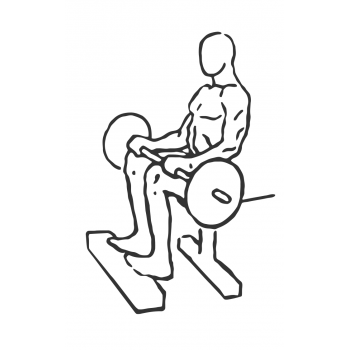 Barbell Seated Calf Raise - Step 1