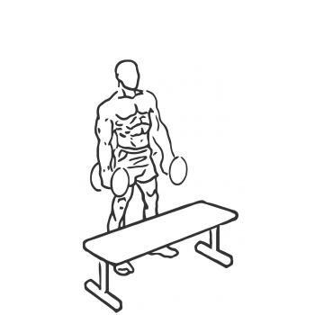 Step Up Single Leg Balance with Bicep Curl - Step 1