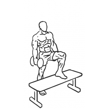 Step Up Single Leg Balance with Bicep Curl - Step 2