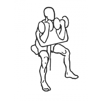 Two Arm Dumbbell Preacher Curl - Step 2
