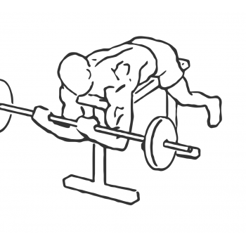 Lying High Bench Barbell Curl - Step 2