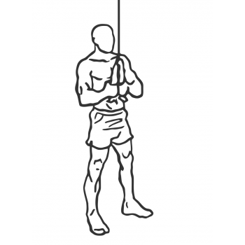 Triceps Pushdown - Rope Attachment - Step 1