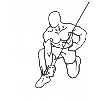 Kneeling Cable Concentration Triceps Extension - Step 2