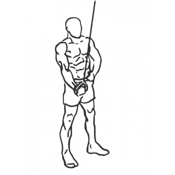 Cable One Arm Tricep Extension - Step 2