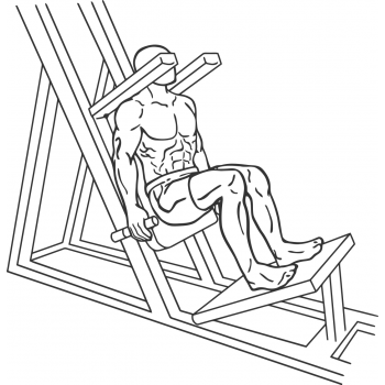 Lying Machine Squat - Step 1