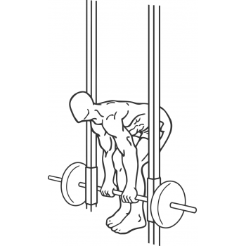 Smith Machine Dead Lifts - Step 2