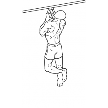 Narrow Parallel Grip Chin-ups - Step 1
