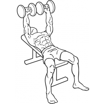 Dumbbell Bench Press - Step 1