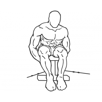 Cable Seated Rear Lateral Raise - Step 2