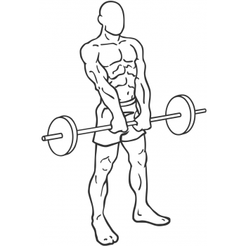 Barbell Shrug - Step 1