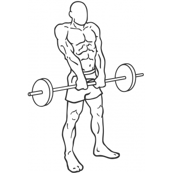 Barbell Shrug - Step 2