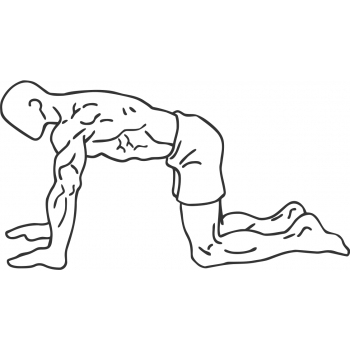 Abdominal 4 Point Drawing In - Step 2