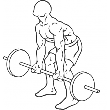 Reverse Grip Bent-Over Rows - Step 1