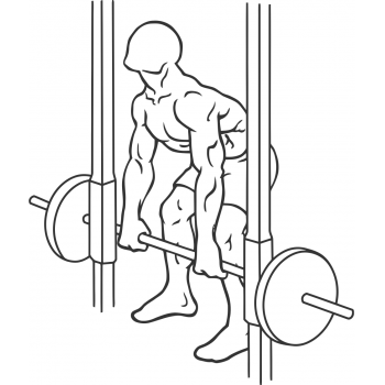 Smith Machine Rear Deltoid Row - Step 1