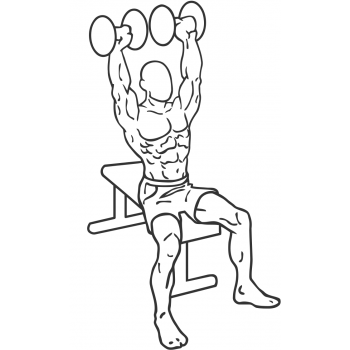 Dumbbell Shoulder Press - Step 1