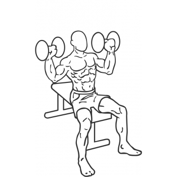 Dumbbell Shoulder Press - Step 2
