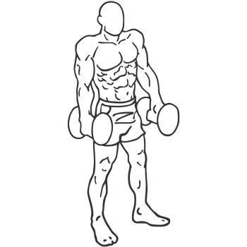 Dumbbell Shrug - Step 1
